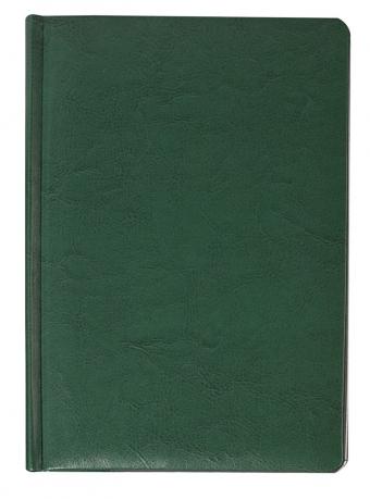 Ежедневник «Скат», зеленый, датированный