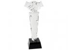 Награда «Рукопожатие»